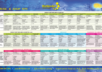 BV_brochure-back