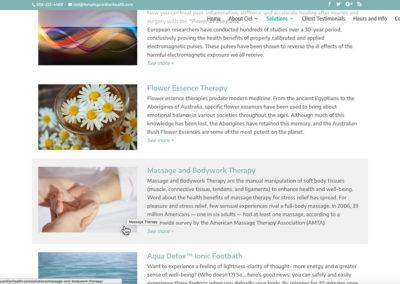 Temple Guardian Solutions desktop view